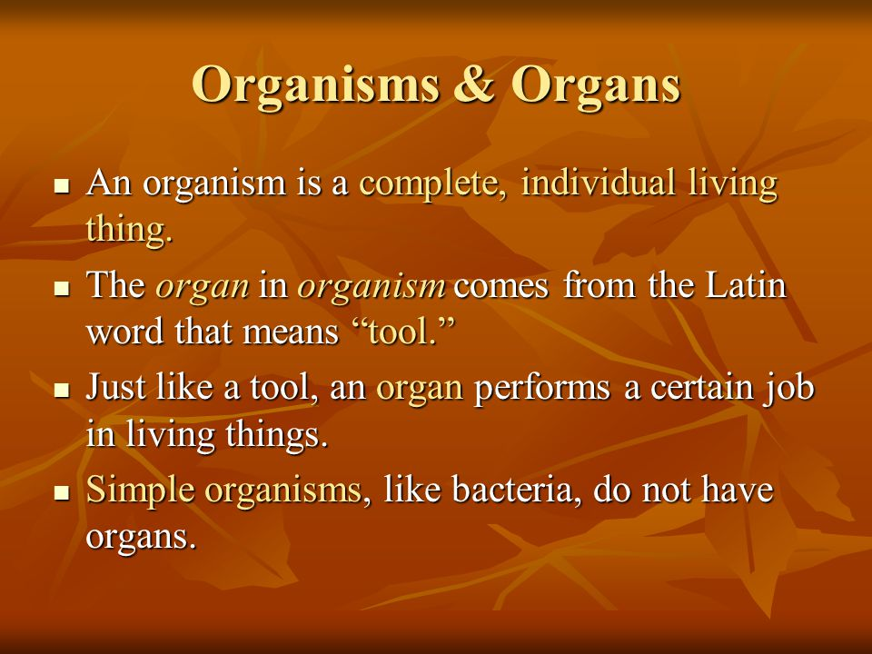 Organisms & Organs An organism is a complete, individual living thing.