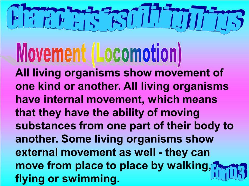 Movement (Locomotion)