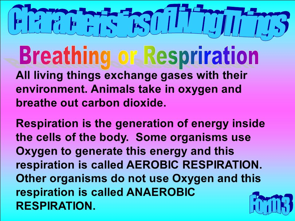 Breathing or Respriration
