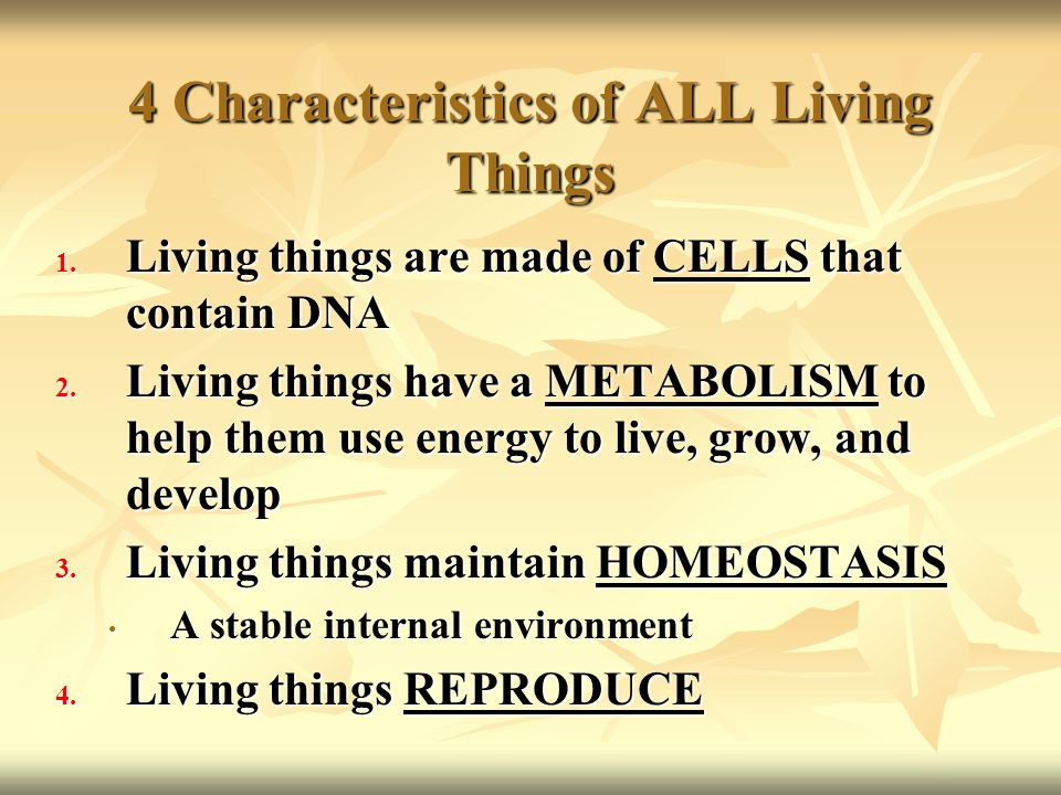 4 Characteristics of ALL Living Things