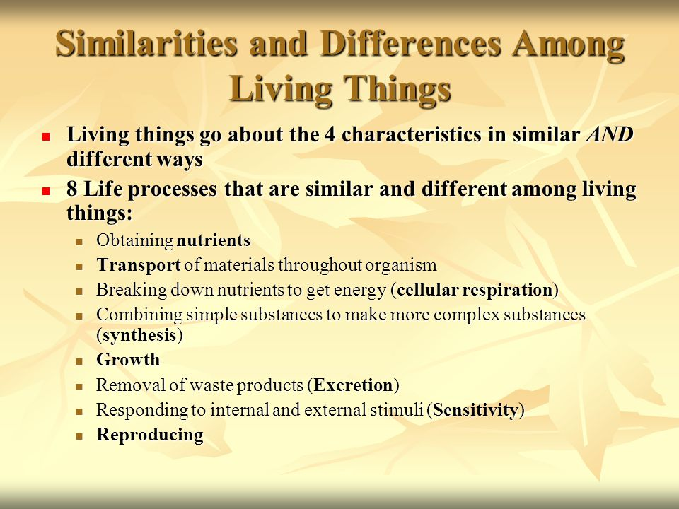 Similarities and Differences Among Living Things