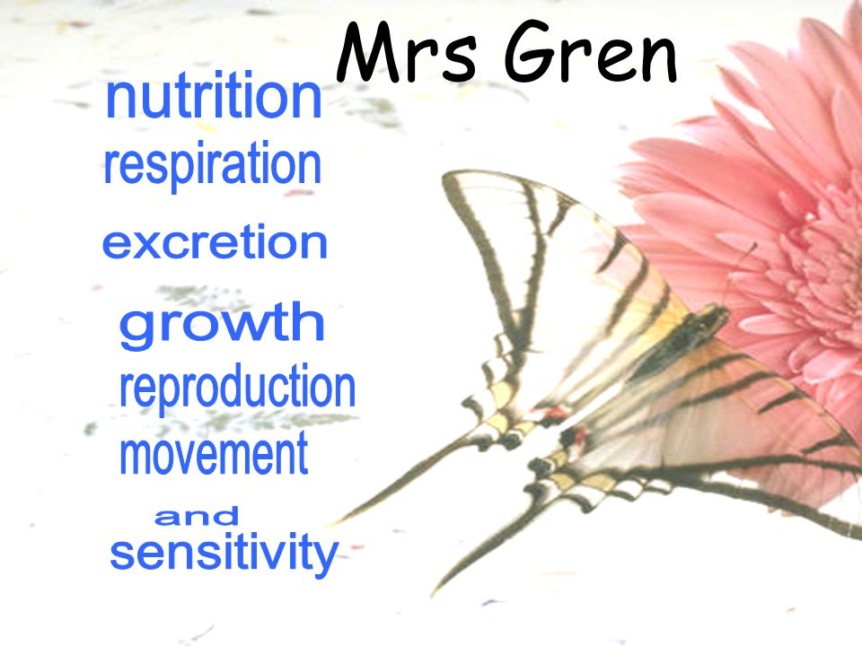 Mrs Gren nutrition respiration excretion growth reproduction movement