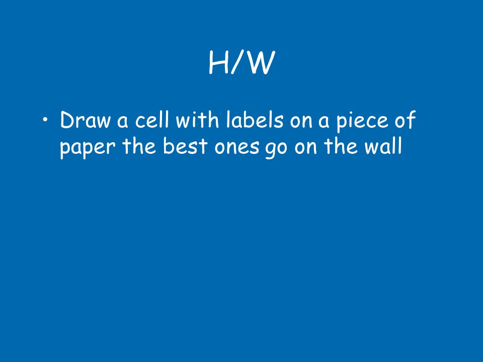 H/W Draw a cell with labels on a piece of paper the best ones go on the wall