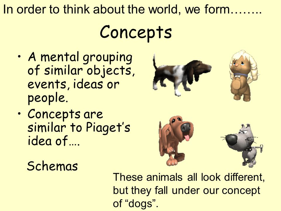 Concepts In order to think about the world, we form……..