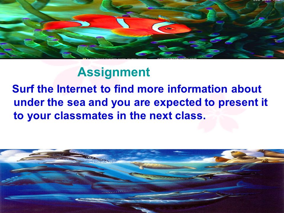 Assignment Surf the Internet to find more information about under the sea and you are expected to present it to your classmates in the next class.
