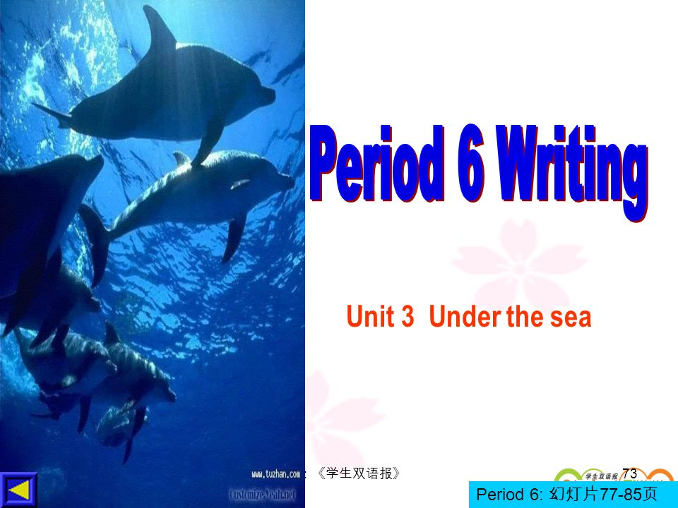 Period 6 Writing Unit 3 Under the sea 策划:《学生双语报》 Period 6: 幻灯片77-85页