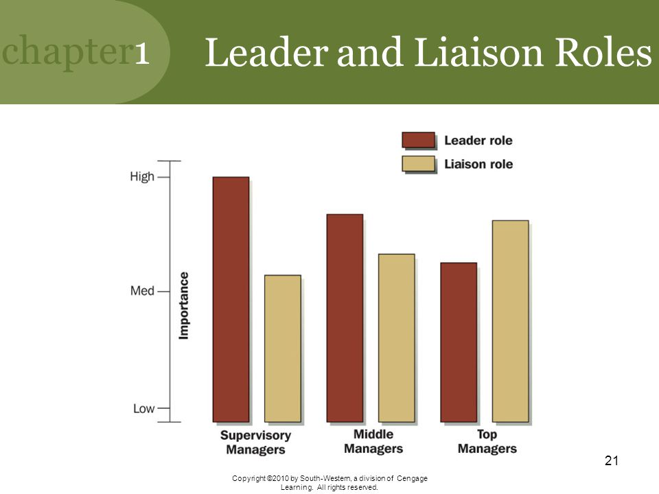 Leader and Liaison Roles