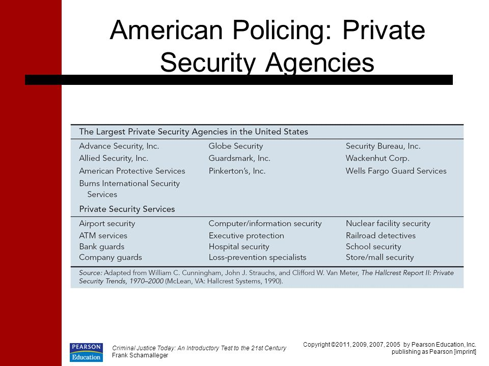 American Policing: Private Security Agencies