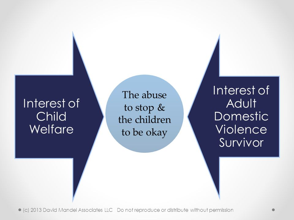 Interest of Child Welfare Interest of Adult Domestic Violence Survivor