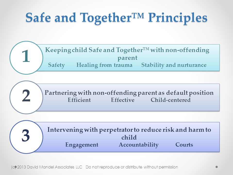 Safe and Together™ Principles