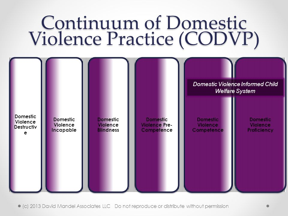 Continuum of Domestic Violence Practice (CODVP)