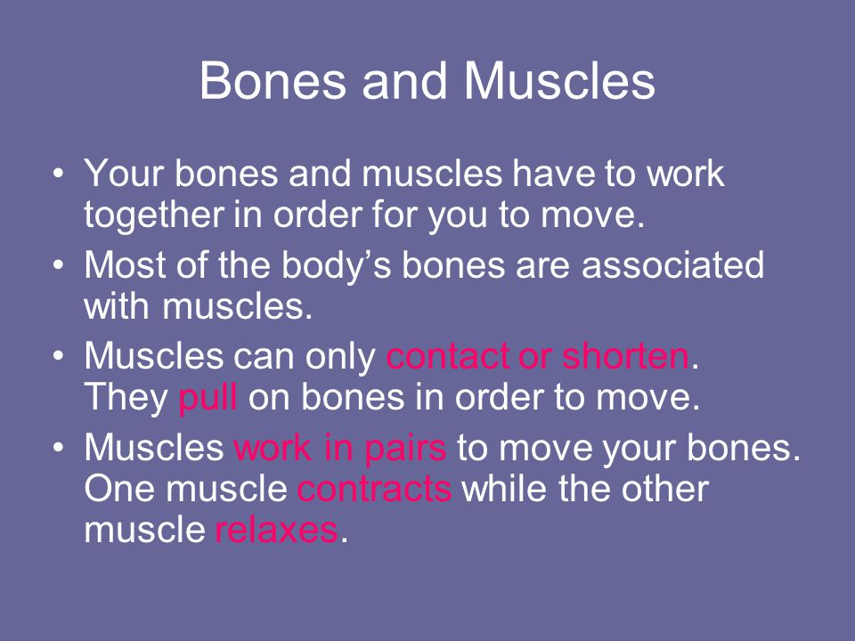 Bones and Muscles Your bones and muscles have to work together in order for you to move. Most of the body's bones are associated with muscles.