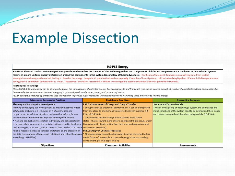 Example Dissection