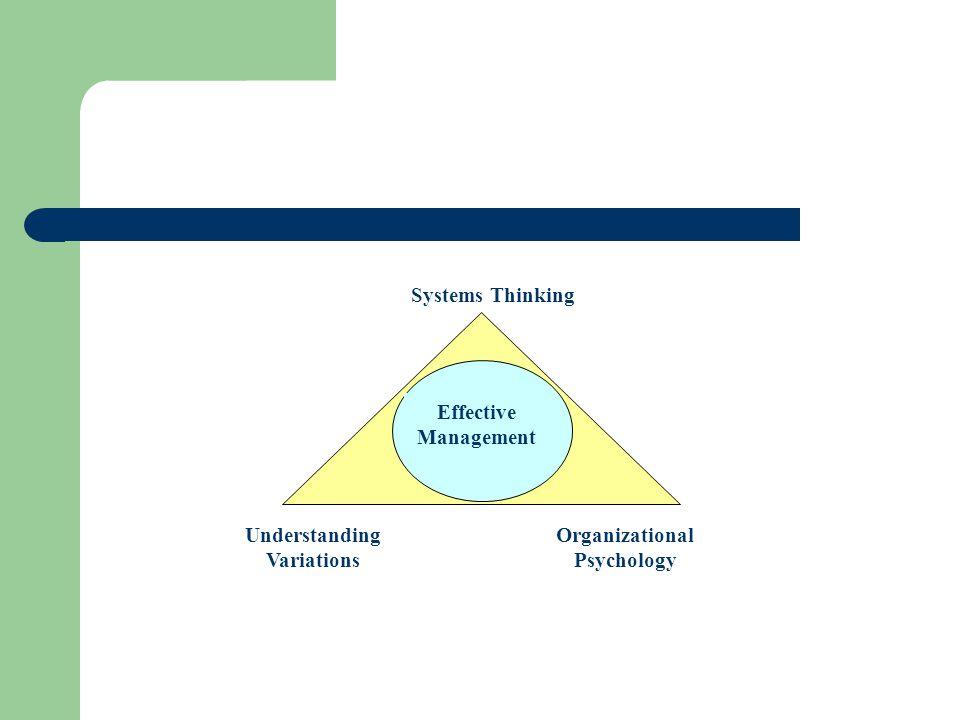 Understanding Variations Organizational Psychology