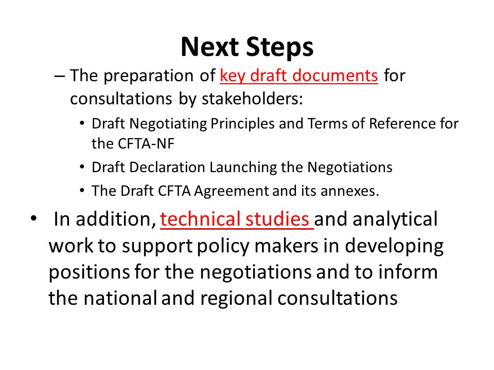Next Steps The preparation of key draft documents for consultations by stakeholders: