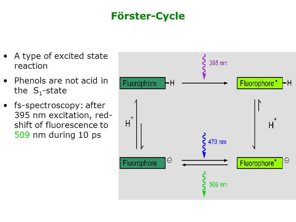 Förster-Cycle A type of excited state reaction