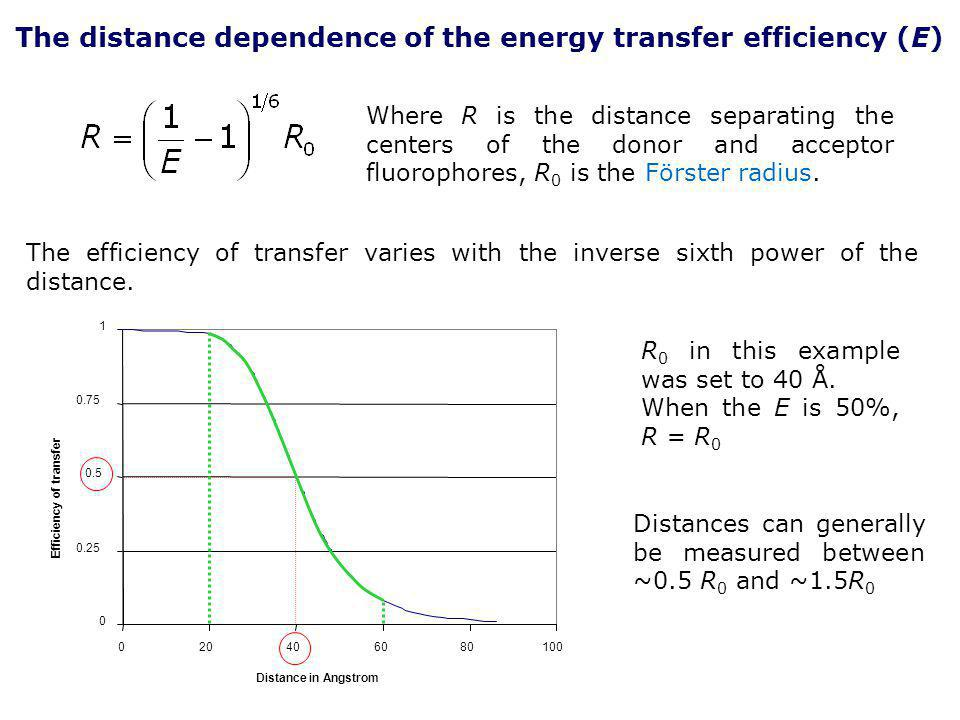 The distance dependence of the energy transfer efficiency (E)
