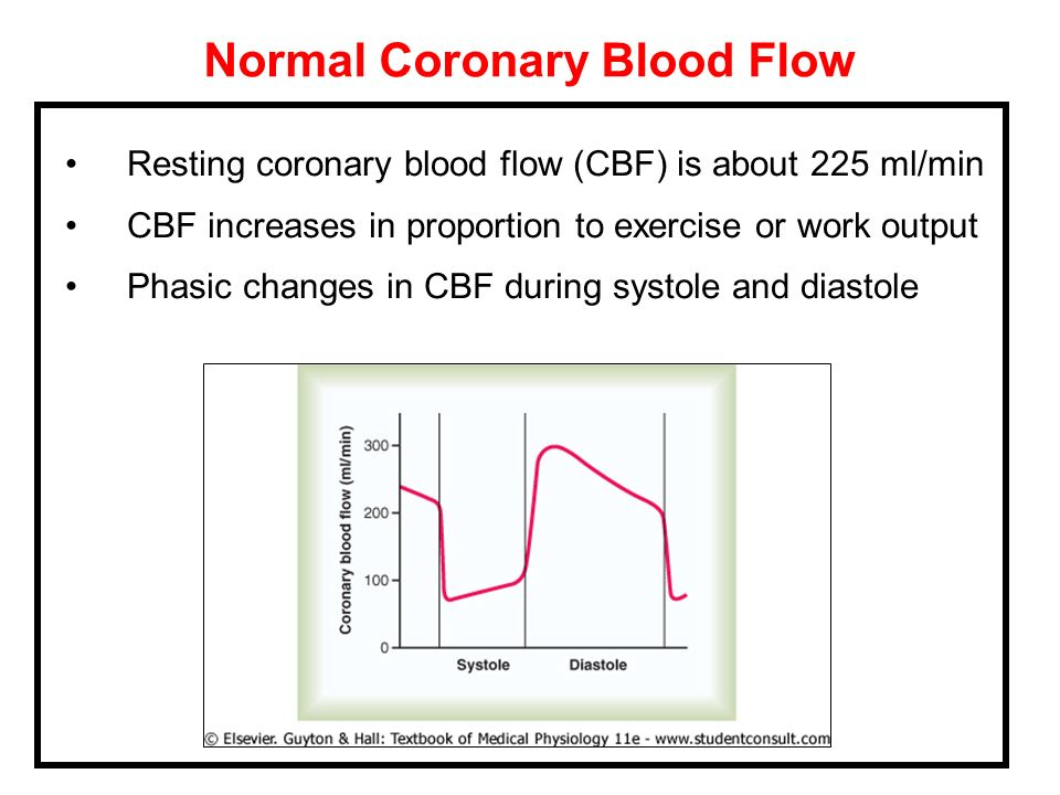 Normal Coronary Blood Flow
