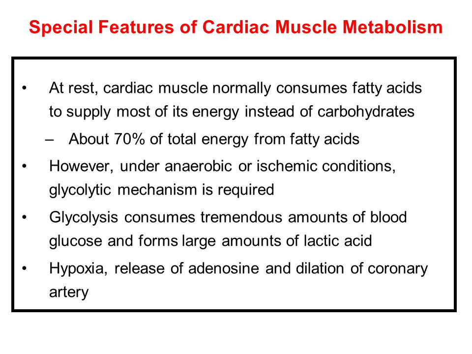 Special Features of Cardiac Muscle Metabolism