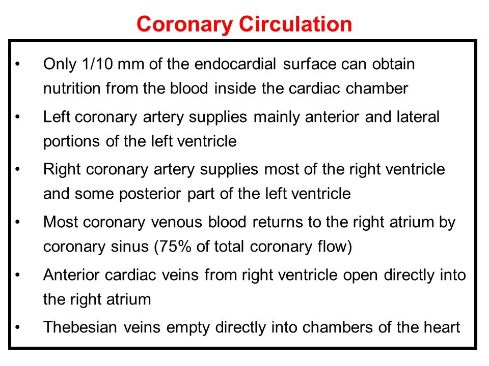 Coronary Circulation Only 1/10 mm of the endocardial surface can obtain nutrition from the blood inside the cardiac chamber.