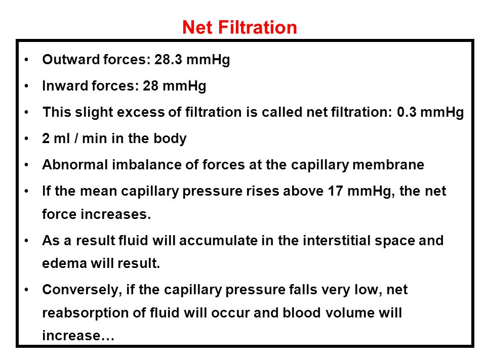 Net Filtration Outward forces: 28.3 mmHg Inward forces: 28 mmHg