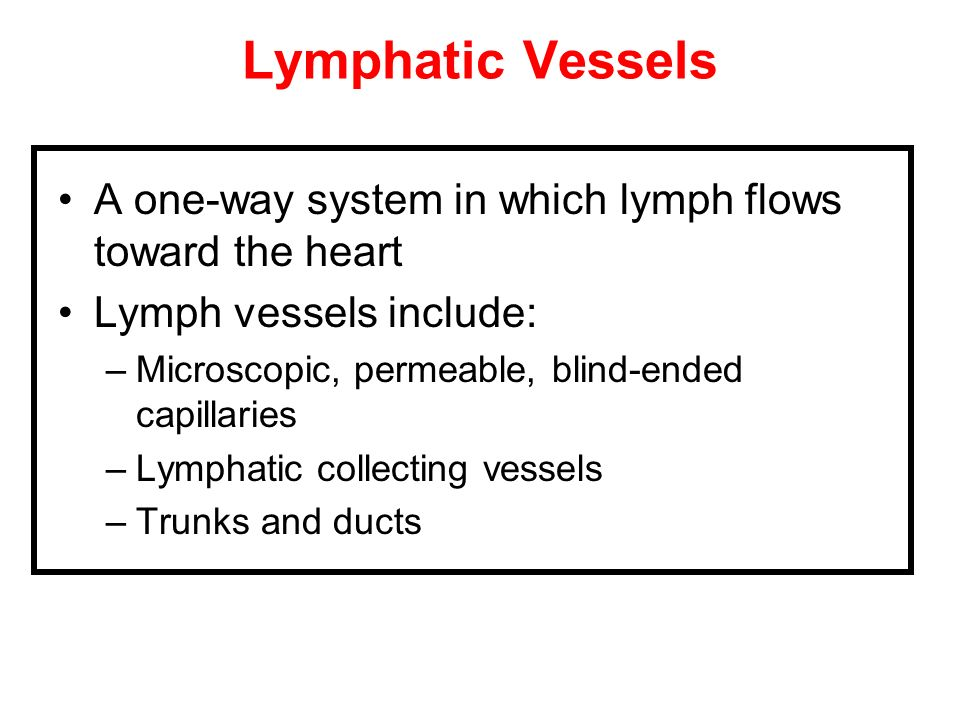 Lymphatic VesselsA one-way system in which lymph flows toward the heart. Lymph vessels include: Microscopic, permeable, blind-ended capillaries.
