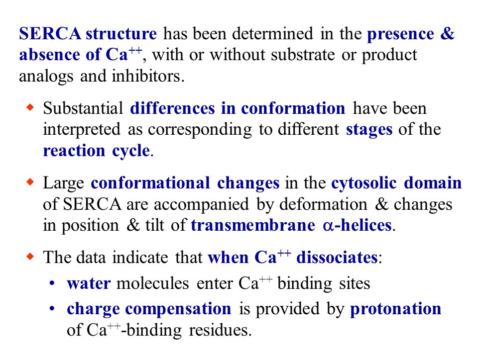 SERCA structure has been determined in the presence & absence of Ca++, with or without substrate or product analogs and inhibitors.