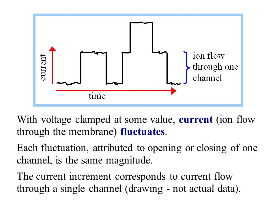 With voltage clamped at some value, current (ion flow through the membrane) fluctuates.