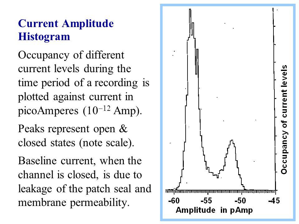 Current Amplitude Histogram