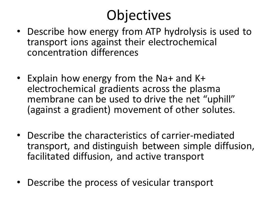 Objectives Describe how energy from ATP hydrolysis is used to transport ions against their electrochemical concentration differences.
