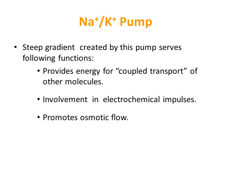 Na+/K+ Pump Steep gradient created by this pump serves following functions: Provides energy for coupled transport of other molecules.