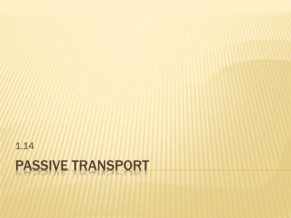1.14 Passive Transport