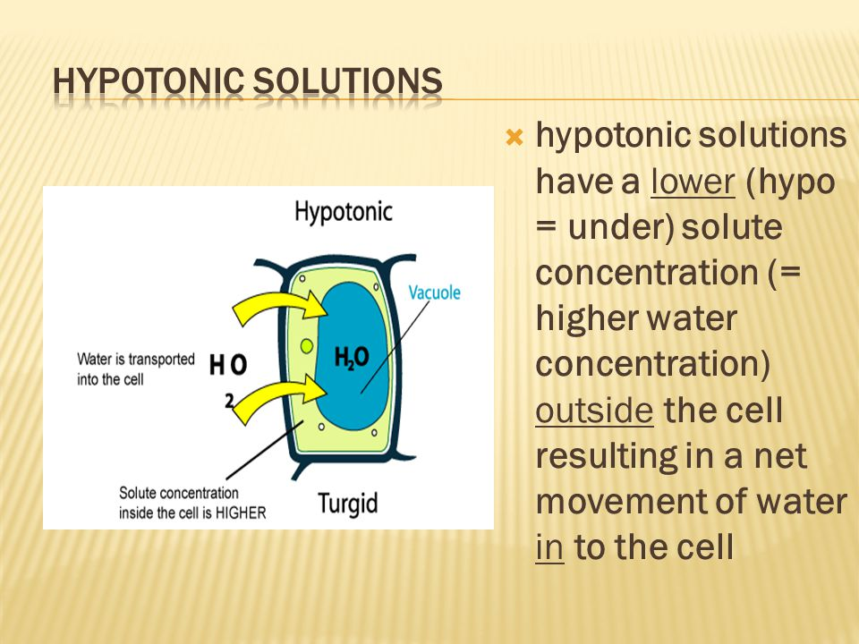 Hypotonic Solutions