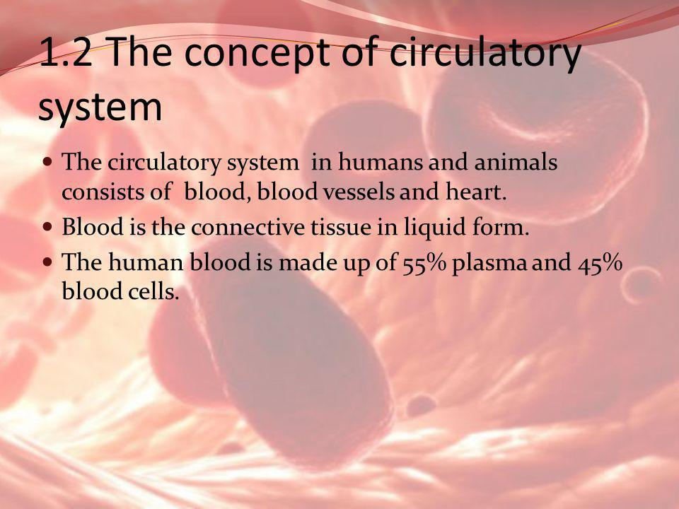 1.2 The concept of circulatory system