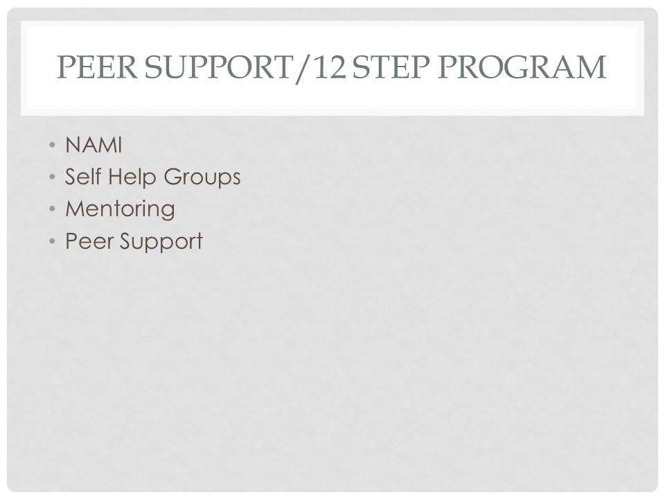 PEER SUPPORT/12 STEP PROGRAM