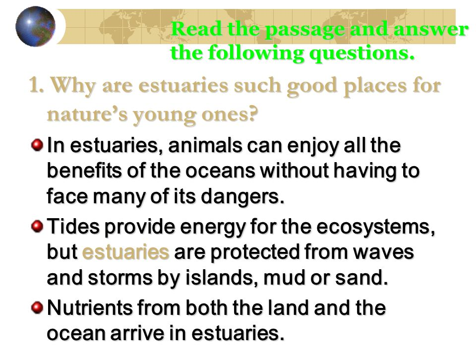 1. Why are estuaries such good places for nature's young ones