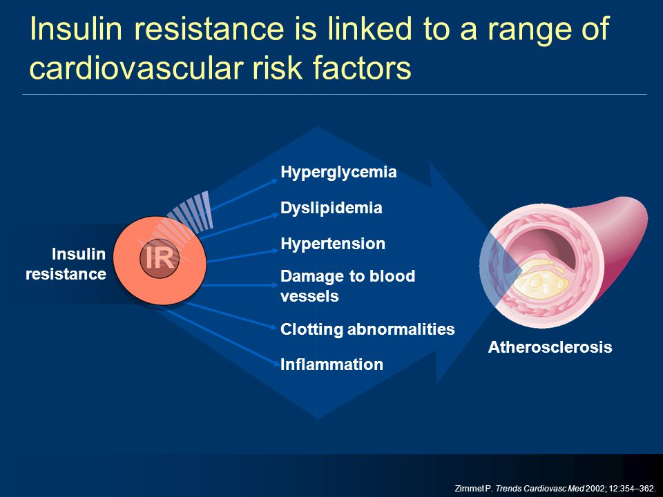 Insulin resistance is linked to a range of cardiovascular risk factors