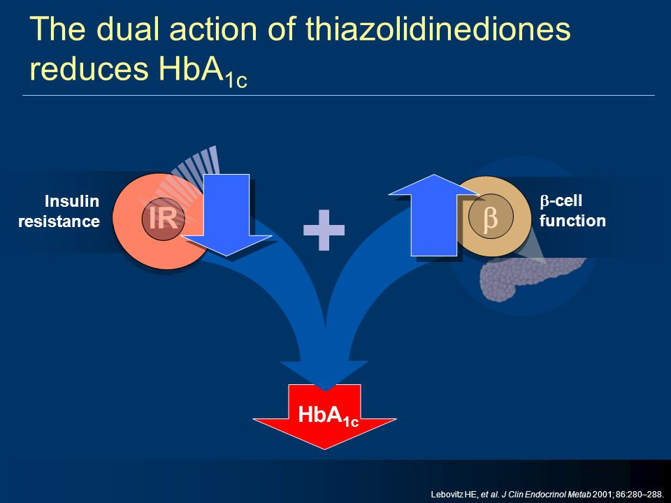 The dual action of thiazolidinediones reduces HbA1c