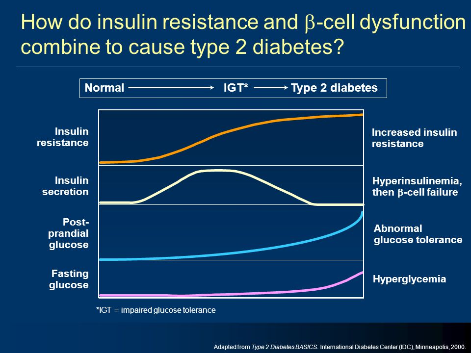 How do insulin resistance and -cell dysfunction combine to cause type 2 diabetes