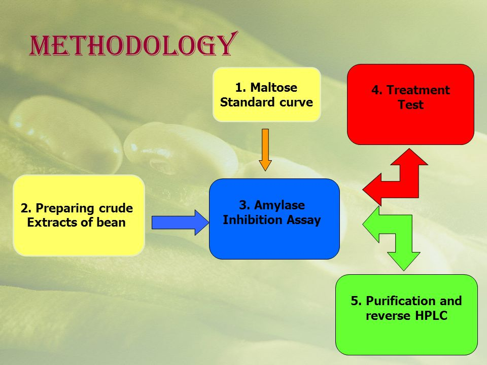 METHODOLOGY 1. Maltose 4. Treatment Standard curve Test