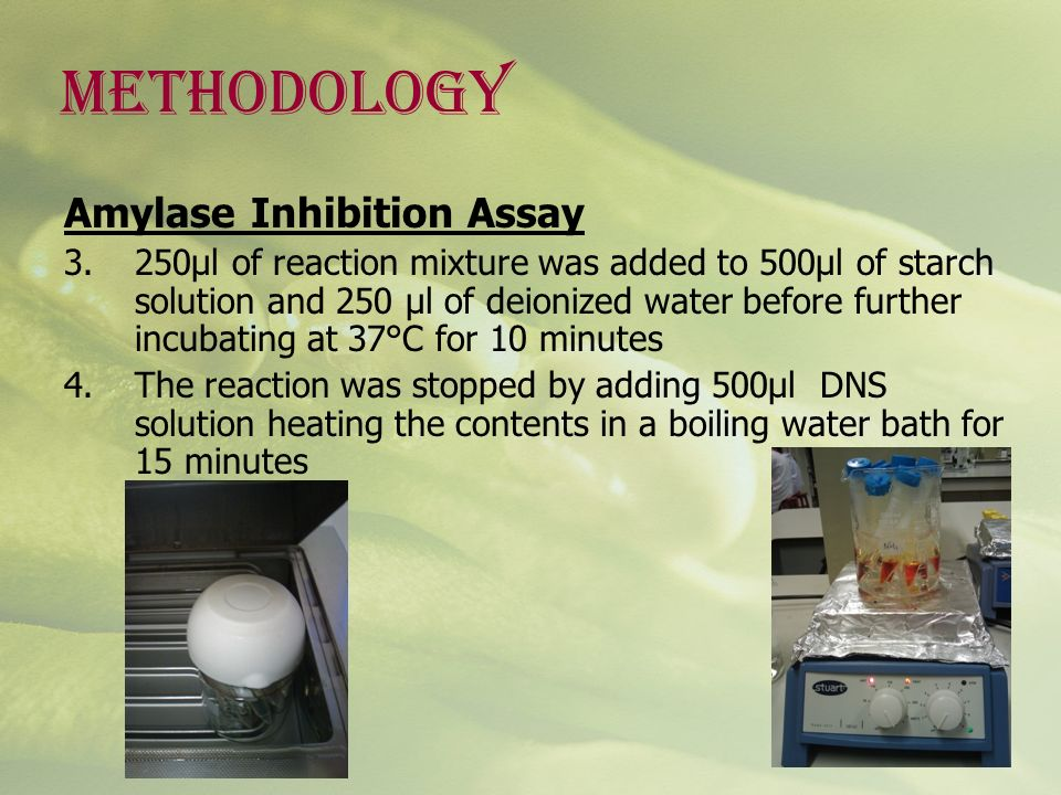 METHODOLOGY Amylase Inhibition Assay