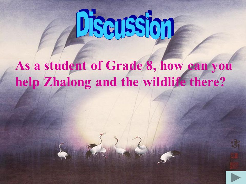 Discussion As a student of Grade 8, how can you help Zhalong and the wildlife there