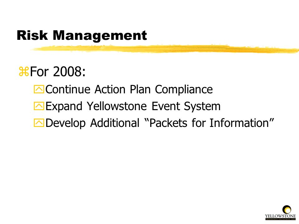 Risk Management For 2008: Continue Action Plan Compliance
