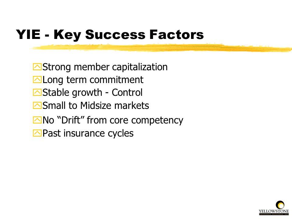 YIE - Key Success Factors