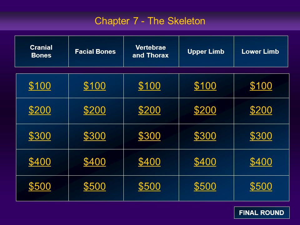 Chapter 7 - The Skeleton $100 $100 $100 $100 $100 $200 $200 $200 $200
