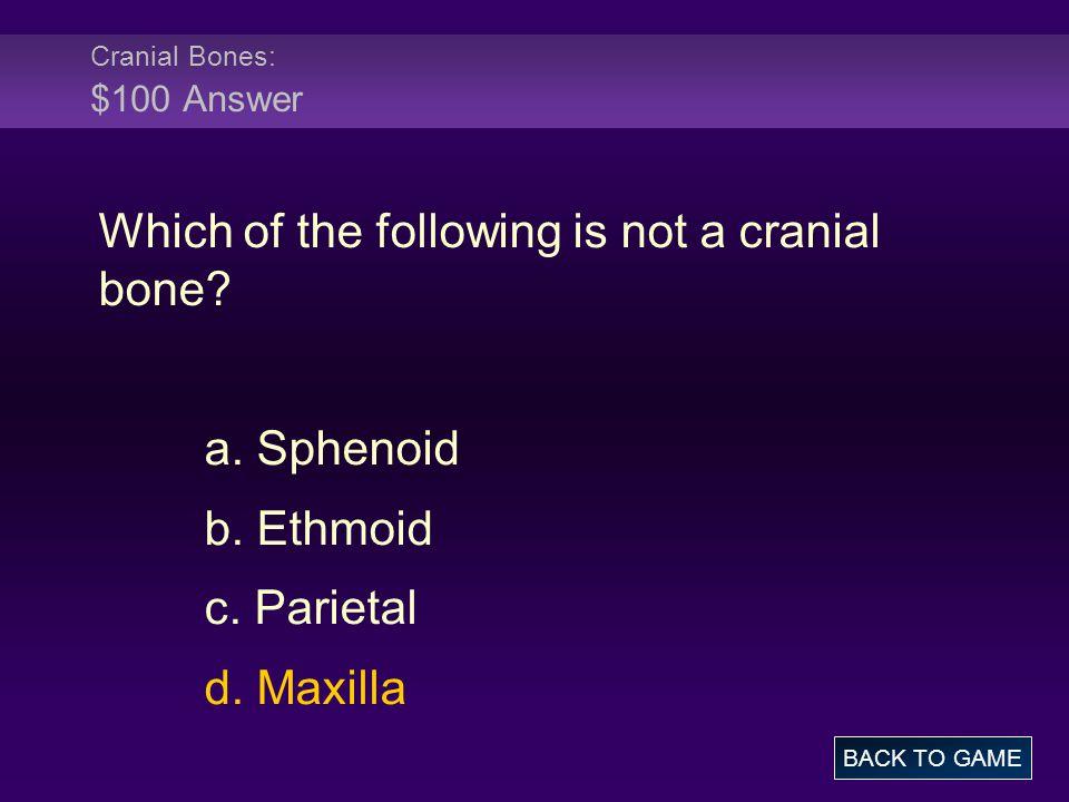 Cranial Bones: $100 Answer