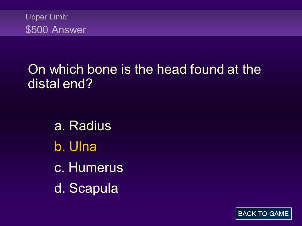 On which bone is the head found at the distal end