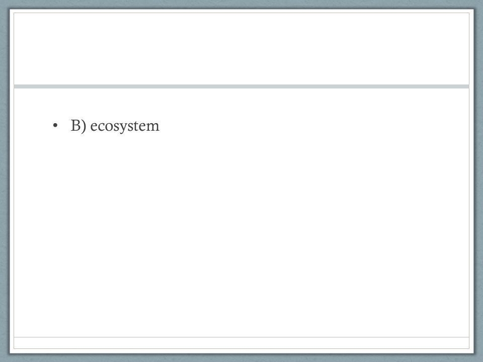 B) ecosystem