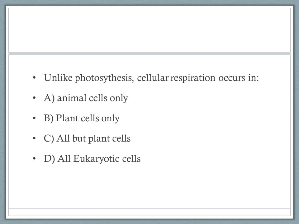 Unlike photosythesis, cellular respiration occurs in: