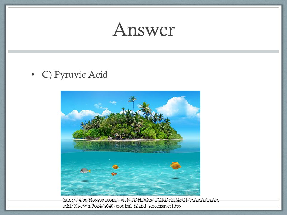 Answer C) Pyruvic Acid.